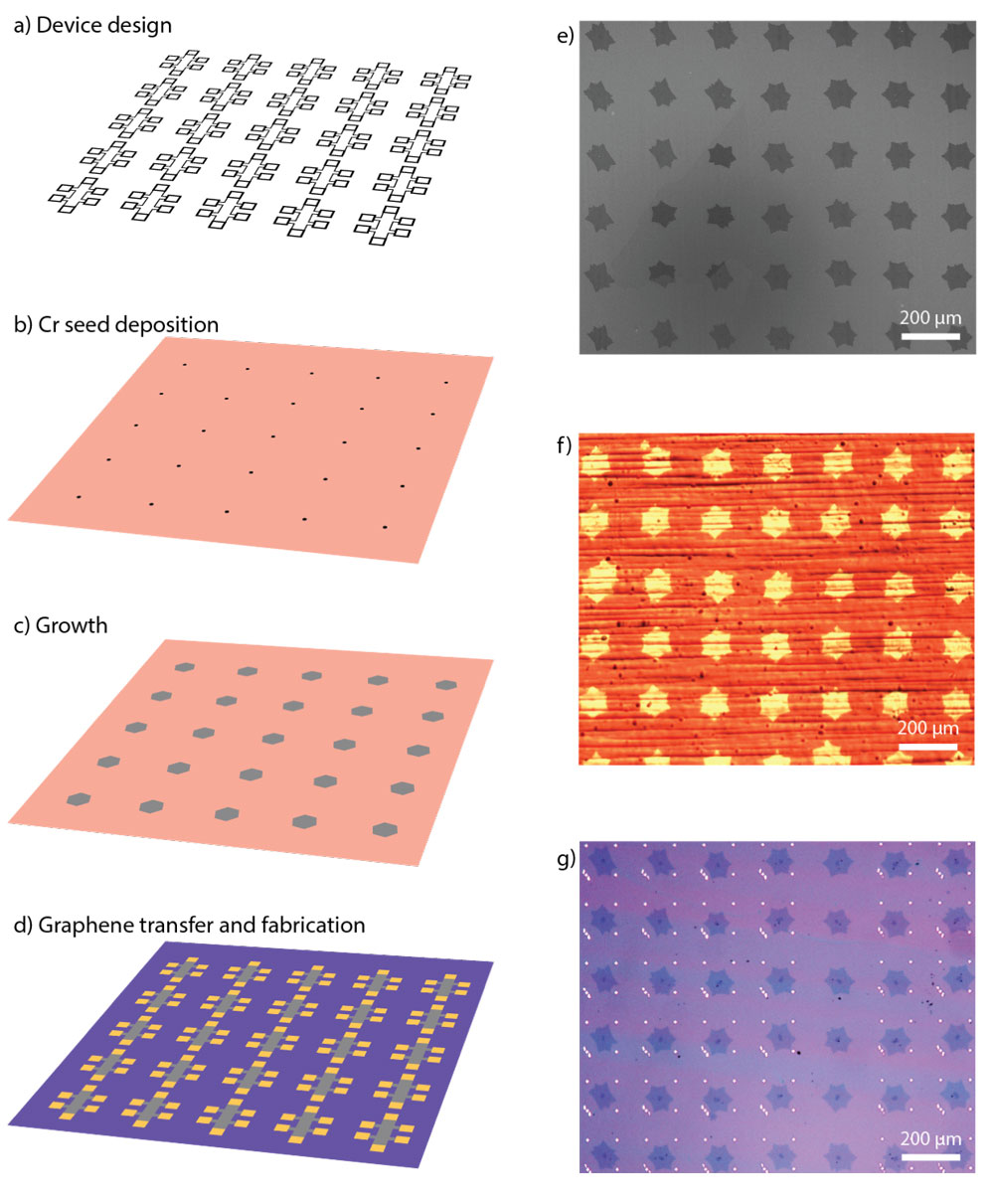 Fig. 1. (a)–(d) Proposed process flow for deterministic growth of single-crystal graphene. (e) SEM image of an array of graphene single-crystals. (f) Optical image of a graphene array on oxidised Cu foil. (g) Optical image of single-crystal array transferred onSi/SiO2 substrate with alignment markers. In figures (e)–(g) the array periodicity is 200 μm and crystal size is ~100 μm Miseikis et al, 2D Mater 4 2017